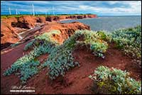 North Cape Hiking Trail Prince Edward Island by Robert Berdan