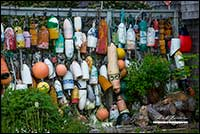 Collection of fishing bouys Nova Scotia by Robert Berdan