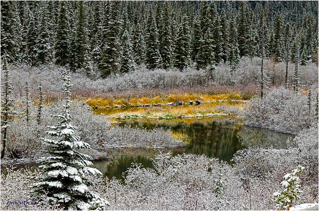 First snow on the Upper Pine River by Egan Wuth ©