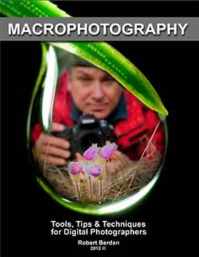 Macrophotography E-book by Robert Berdan