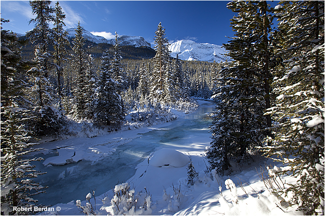 Black prince trail in Winter along Spray lakes Road Kananaskis by Robert Berdan ©