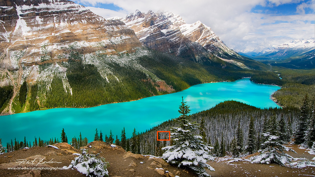 Hyperfocal point in a picture - Peyto Lake by Robert Berdan