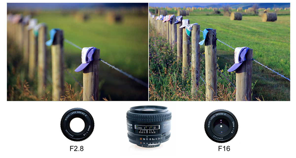 PHoto showing depth of field at F2.8 and f16 by Robert Berdan ©