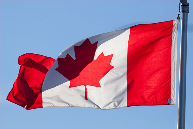 Maple leaf on the Canadian flag by Robert Berdan ©