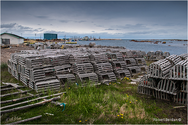 Lobster traps Musgrave Harbour Newfoundland by Robert Berdan ©