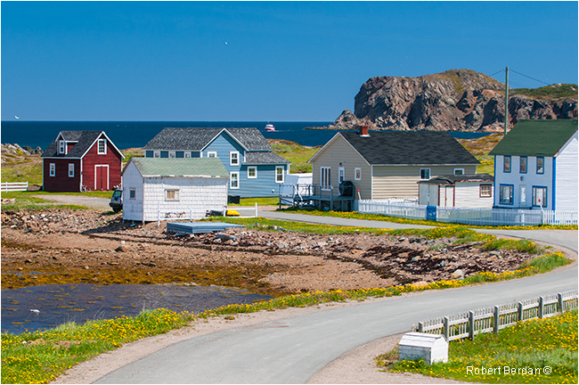 Twillingate by Robert Berdan ©