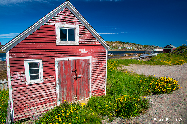 Fishing stage in Durrell's Arm near Twillingate Newfoundland by Robert Berdan ©