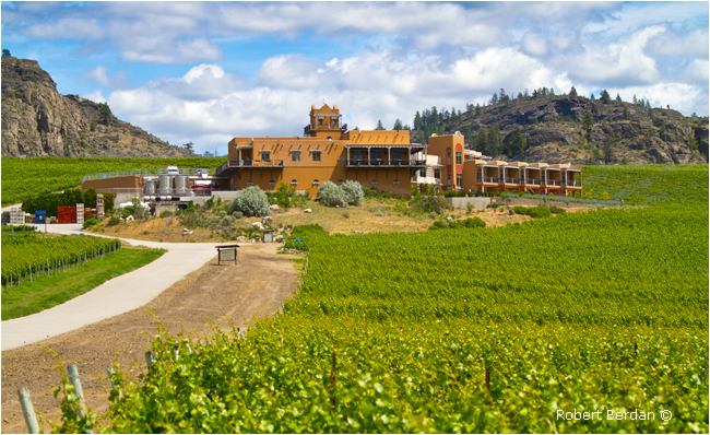 Burrowing Owl Winery Osoyoos, BC by Robert Berdan