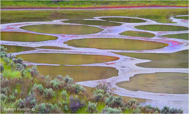 Spotted lake northwest of Osoyoos by Robert Berdan ©