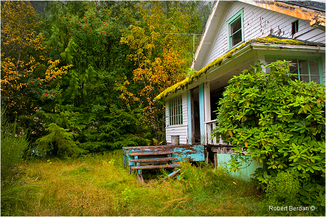 Abandoned building with moss by Robert Berdan ©