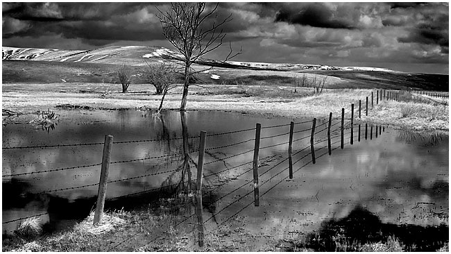 Alberta foothills black and white photograph by Robert Berdan