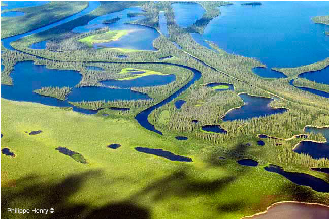Mackenzie delta by Philipper Henry ©