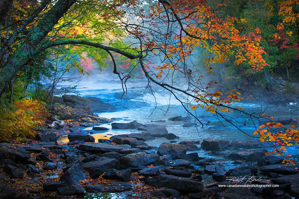Oxtongue river Ontario in autumn by Robert Berdan ©