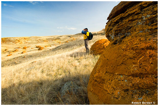 Robert Berdan peers across the coulee at the boulder field, Red Rock Coulee by R. Berdan ©