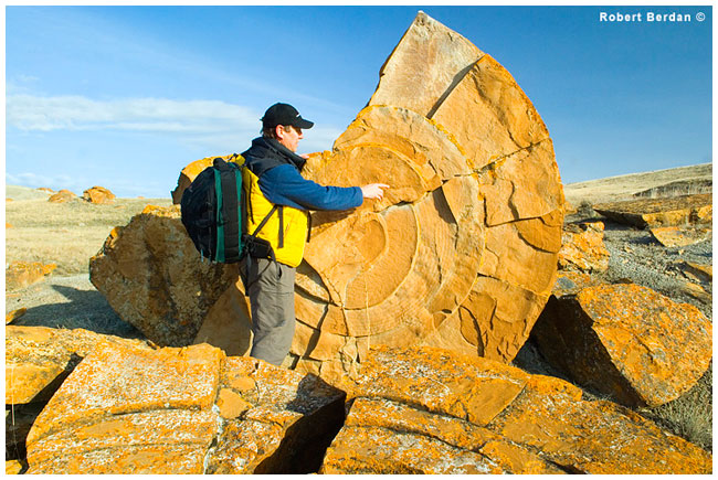 Robert Berdan pointing out layers in a split concretion Red Rock Coulee - R. Berdan ©