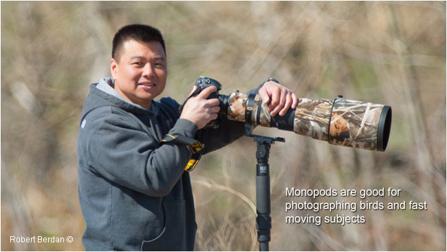 Photographer using monopod for lens support by Robert Berdan ©