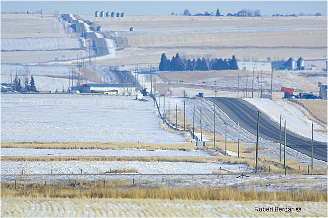 Highway east of Mossleigh showing telephone poles that snowy owls like to perch on by Robert Berdan ©