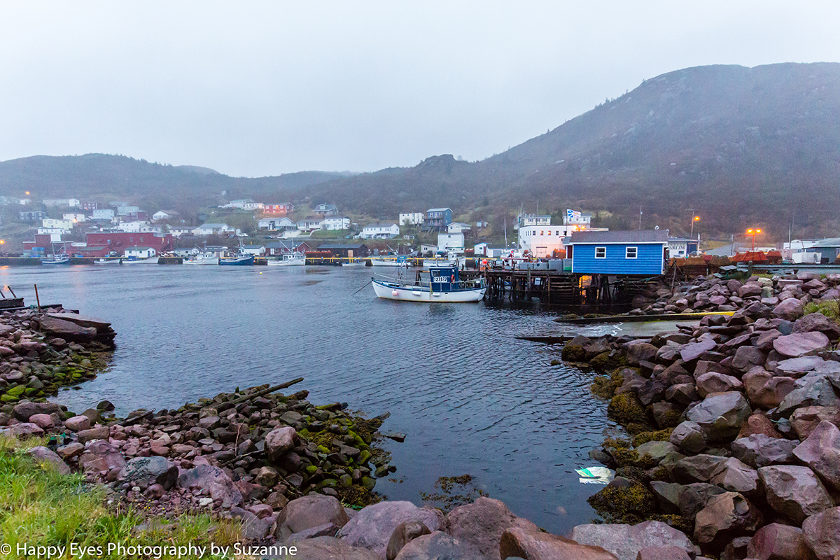 Petty Harbour by Suzanne Roberts ©