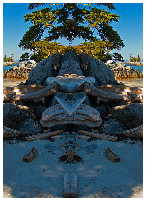 Landscape flipped to form bilateral symmetry - totem pole by Robert Berdan