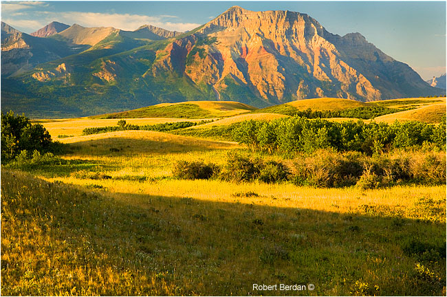 Vimy peak and grasslands near the entrance of Waterton National Park by Robert Berdan