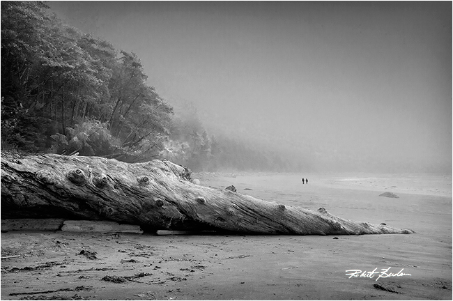 Florencia Bay Black and white photograph by Robert Berdan ©