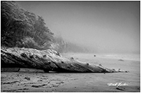 Florencia beach West Coast of Vancouver Island by Robert Berdan ©