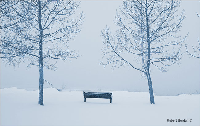 Waiting for spring a park bench in Fish Creek Park by Robert Berdan ©