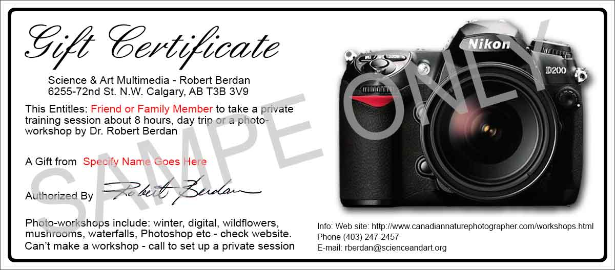 Photo session gift certificate template free gallery certificate the canadian nature photographer upcoming workshops training a gift certificate will be sent or emailed to yelopaper Image collections