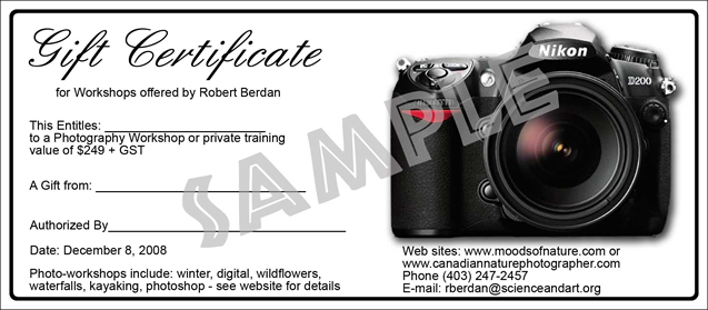 November 29 2013 newsletter the canadian nature photographer gift certificates available 249 gst makes an ideal gift for the photographer in your family yelopaper Gallery