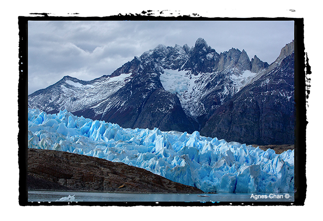 Grey Glacier captured from a boat trip by Agnes Chan ©