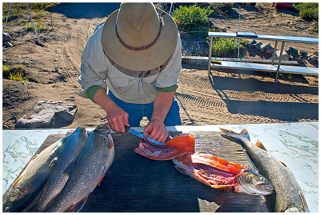 Egan Wuth preparing lake trout for dinner by Robert Berdan ©