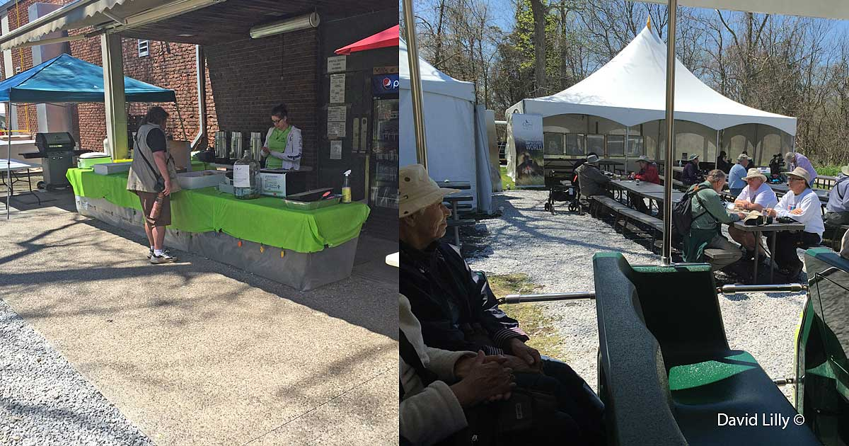 Friends of Point Pelee serving hot dogs Right: Picnic tables and tents for the Birding Festival  by David Lilly ©