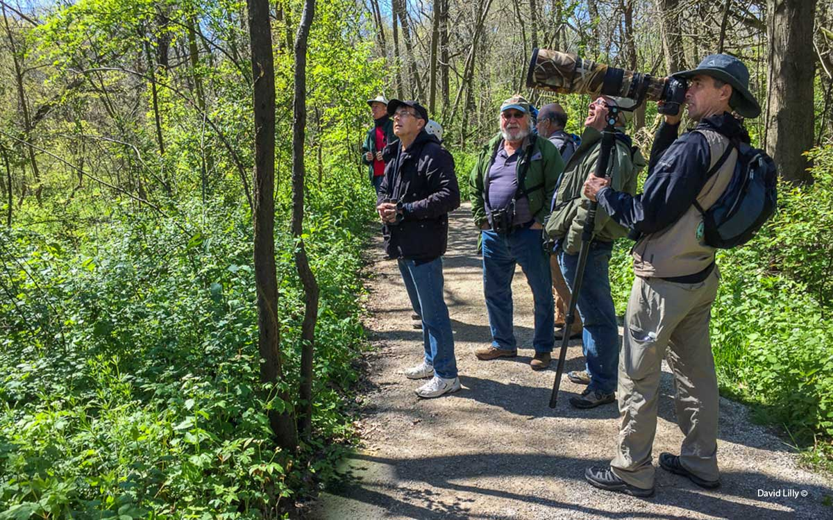 Birders on the trail at Point Pelee by David Lilly ©
