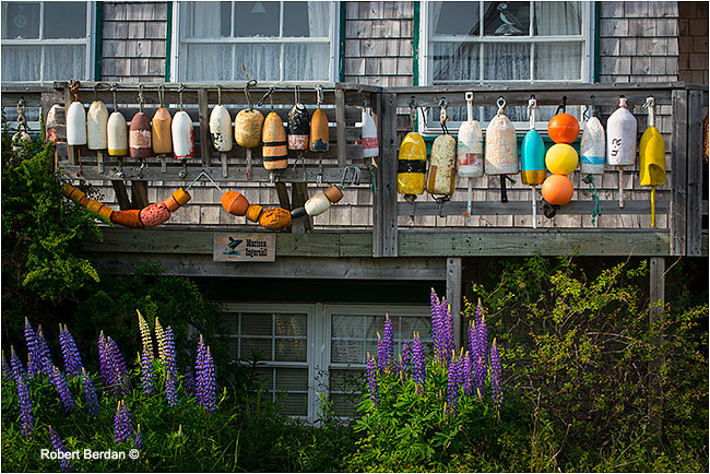 Boat bouys hang from house by Robert Berdan ©