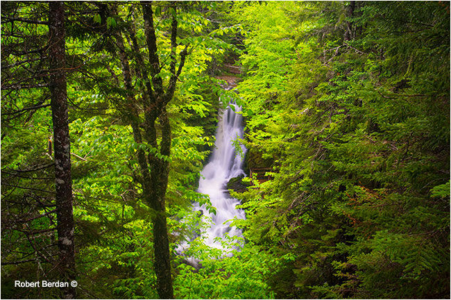 Waterfall Fundy National Park by Robert Berdan ©