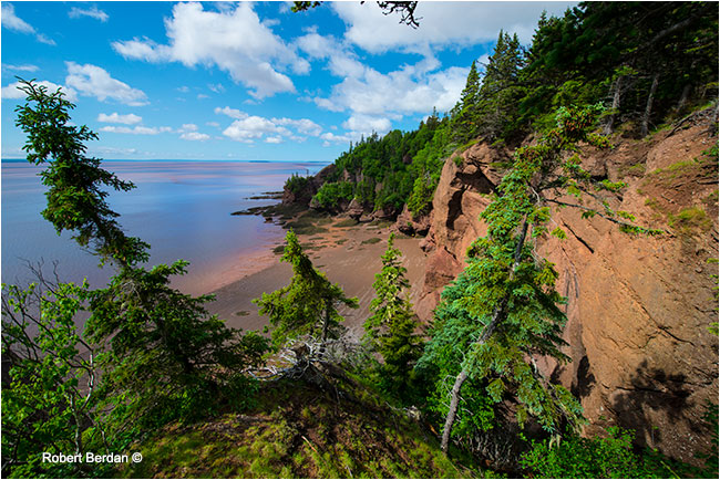 Coast at Hopewell rocks, New Bruinswick by Robert Berdan ©