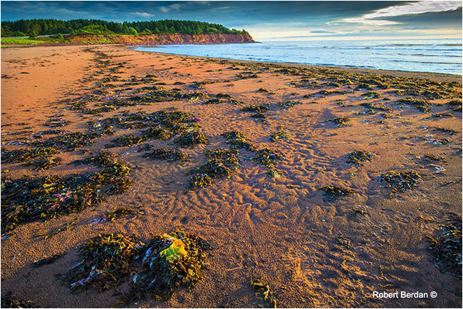 Beach PEI by Robert Berdan ©