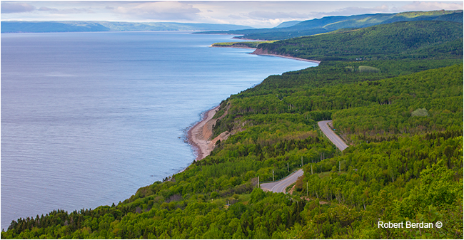 Road near Indian Brooks - we turned off and took the Ferry to Englishtown by Robert Berdan ©