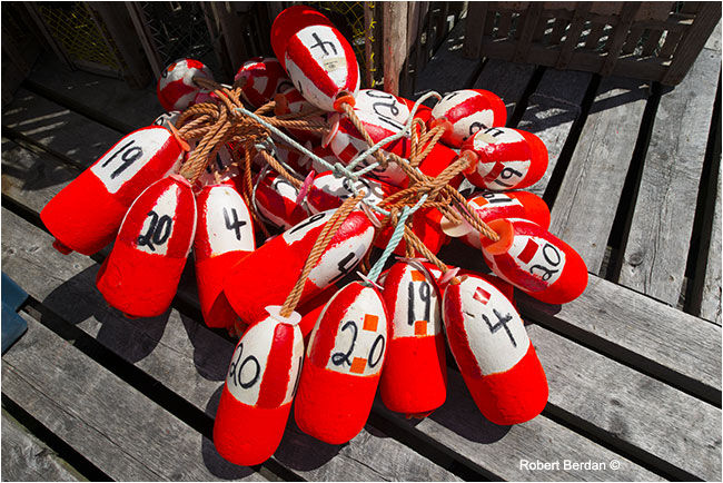 colourful buoys on the Dock by Robert Berdan ©