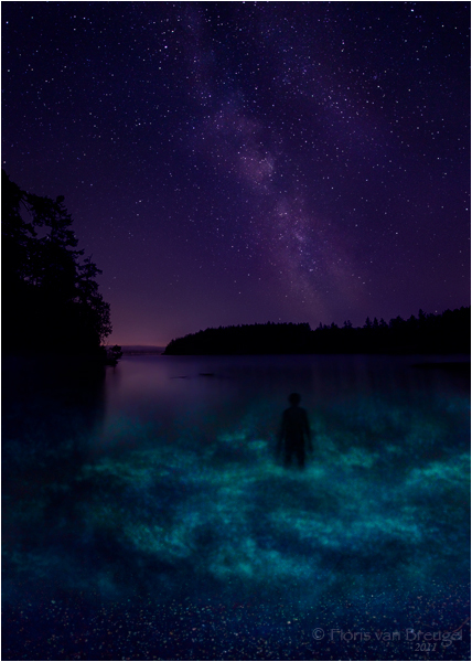 Lumin-Essence -  San Juan Islands, WA by Floris van Breguel ©