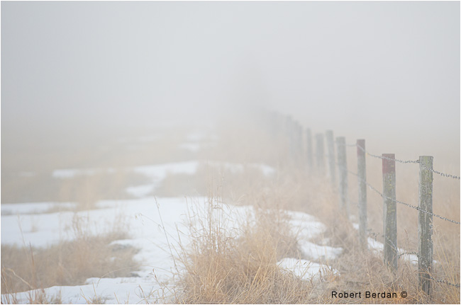 Fence and snow disappearing into the fog by Robert Berdan ©