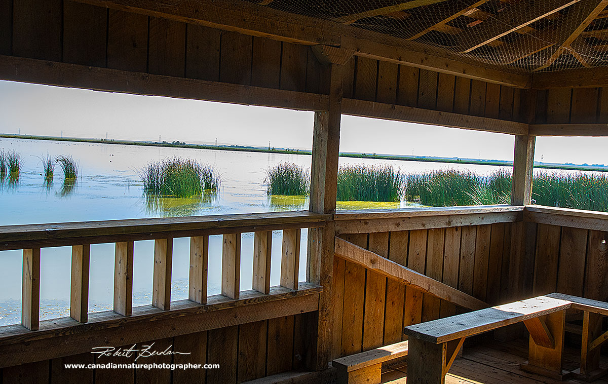 View from inside the blind at Frank Lake. by Robert Berdan ©