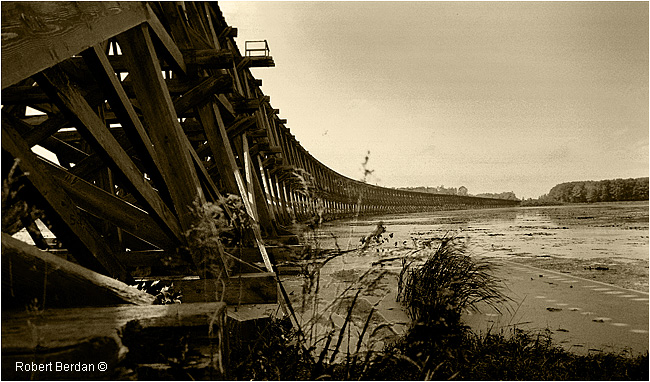 Hog Bay Trestle by Robert Berdan ©