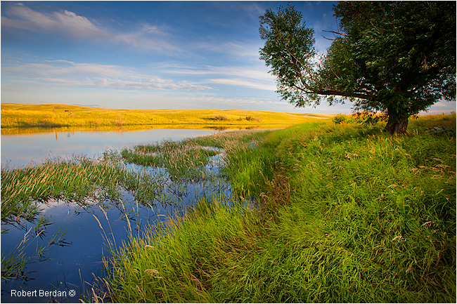Pond at the Crossing Resort looking out onto Grasslands National Park by Robert Berdan