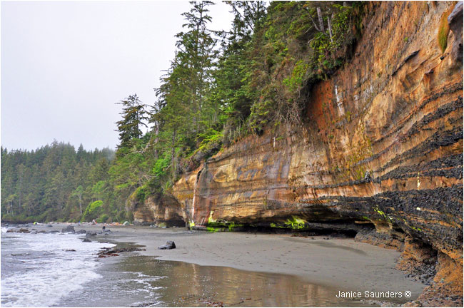 Cliff along China Beach by Janice Saunders ©