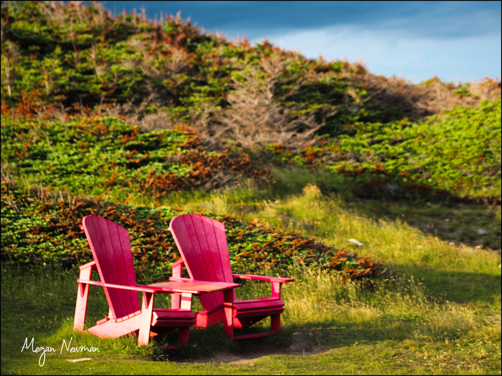 Red Chairs Megan Newman ©