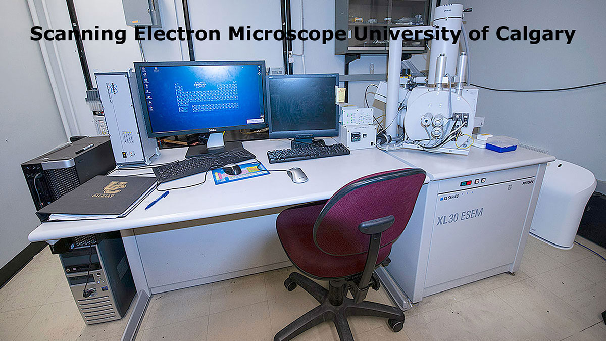 scanning electron microscope from the University of Calgary by Robert Berdan ©