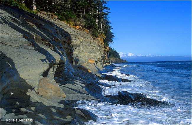 HIgh Tide Beano Beach, Nootka Trail by Robert Berdan
