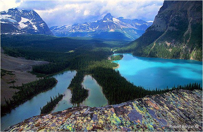 Lake O'hara and smaller ponds from the Yukness Ledge by Robert Berdan ©