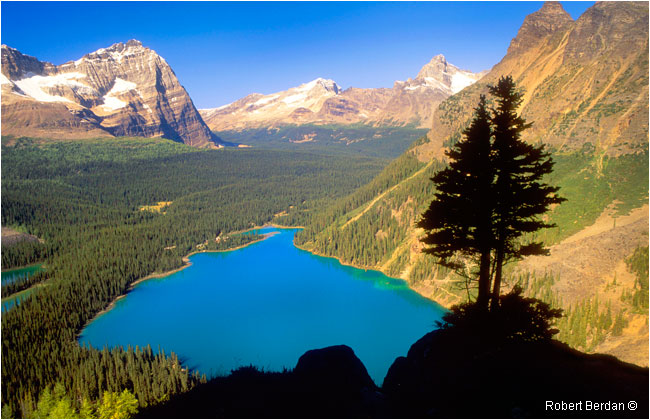View of Lake O'hara from the Yukness Ledge by Robert Berdan ©